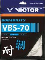 VICTOR VBS-70 10-Meter Set
